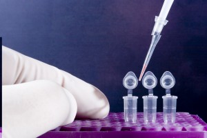 Know About DNA Testing