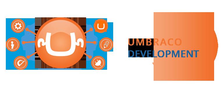 Umbraco Website Development Helps Website Owners