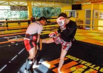 Muay Thai Camp Is More Than Just Loss Weight Fitness Routine