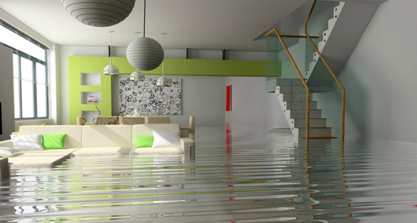 What Can A Water Damage Service Do For Your Home After A Disaster