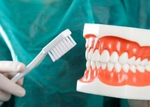 What Qualities Do You Need To Have As A Dental Hygienist?
