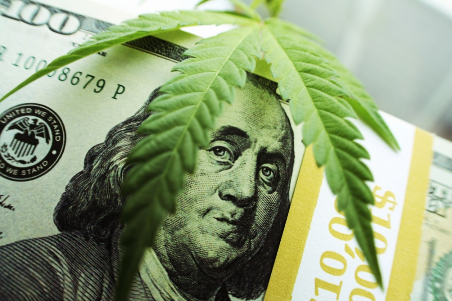Starting A Successful Marijuana Business