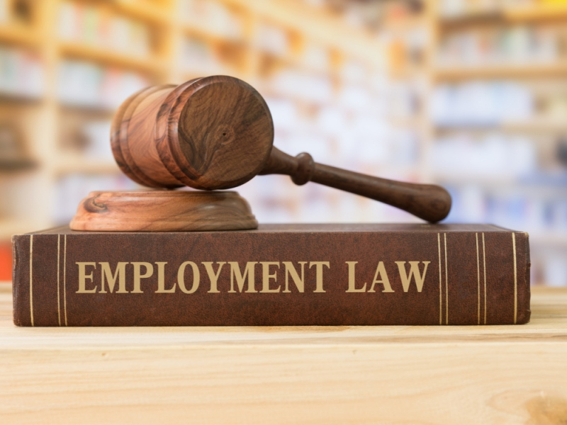 What Can An Employment Lawyer Do?